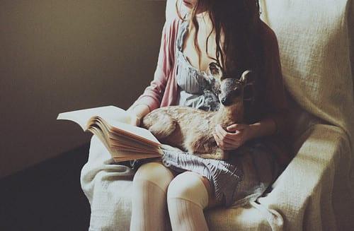 book,cute,old,reading,atmosphere,deer-e76dad3f90a5c66256dbcd82f698da2f_h