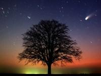 Egy keringő üstökösről, és arról, hogy soha ne add fel…
