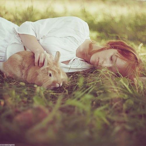 bunny,beautiful,female,photography,rabbit,gingerhair-411b4b3276f5669daaed5f1d8361c9ee_h