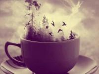 az utolsó kihűlt kávé