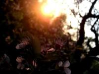 Interjú Zagyi Anikóval, avagy párhuzam az írás és a fotózás között