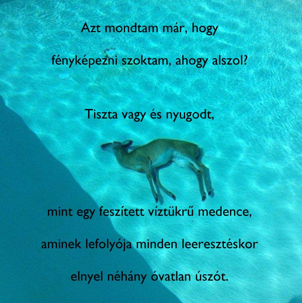 tumblr_nllzzaKHvi1u1p3p9o1_1280
