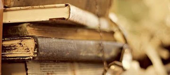 Fejezetek – interjú Cz. Julcsival