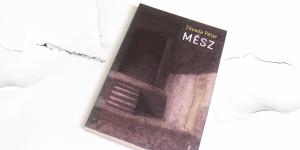 Betokosodott szilánkok – ajánló Závada Péter Mész című kötetéről