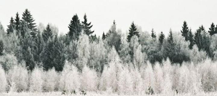 A téllel karöltve