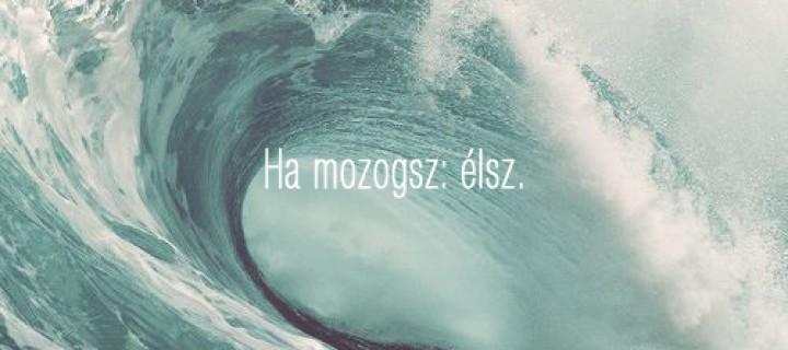 Valaki, aki a hullámokon át tanít élni… Könyvajánlóval egybe kötött interjú Radnóthy Szabolcs íróval