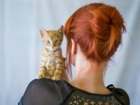 Egy délután Warga Krisztával – ajánló a GingerCat blogról
