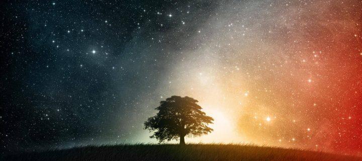 Ha kívánhatnék a csillagoktól…
