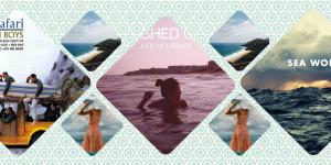 5 gyönyörű tengerparti lemezborító, amely megidézi a nyarat