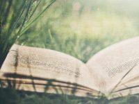 Friss olvasmányélmények kánikulára