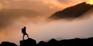 Milyen hosszú egy kilométer? – Cheryl Strayed: Vadon című regénye közelebbről