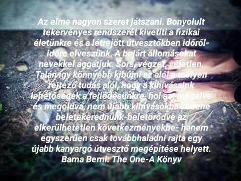 forrás: Barna Berni: The One- A Könyv