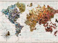 Pillangótérkép