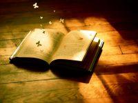 Milyen a jó könyv?