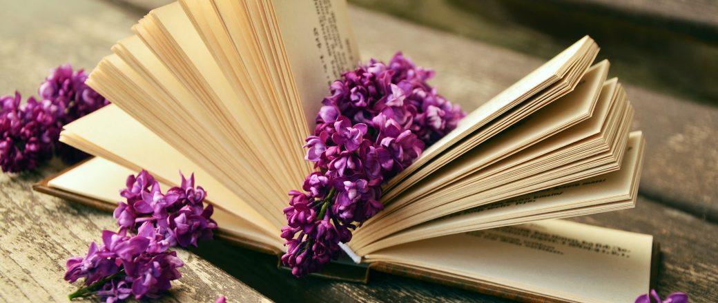 Ajánló Dalma és Petra blogjáról a Könyv varázsról