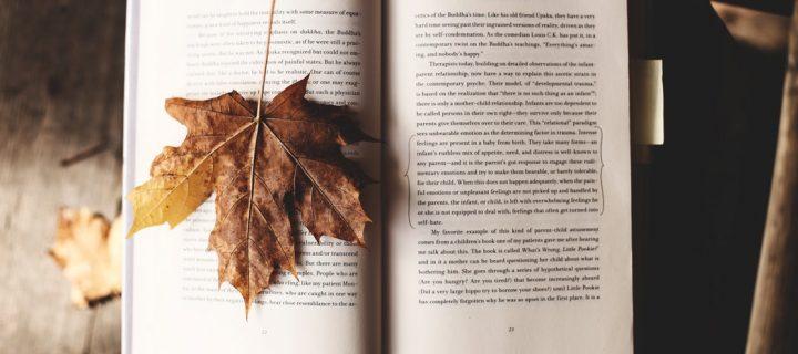 4 + 1 könyv, amit muszáj elolvasnod az ősszel!